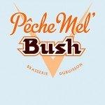 Pêche Mel Bush från Brasserie Dubuisson